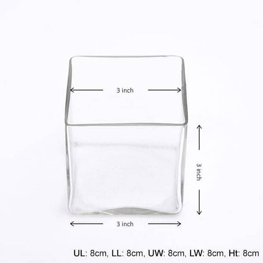 3 Inch (8 cm) Square Glass Vase - Nurserylive