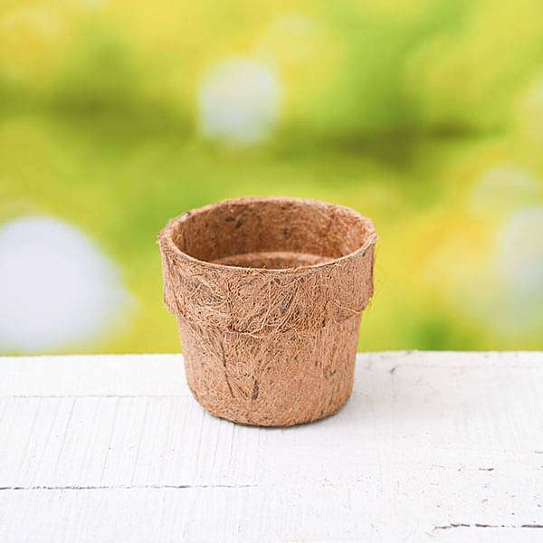4.3 inch (11 cm) Coco Round Pot (Brown) (set of 6) - Nurserylive