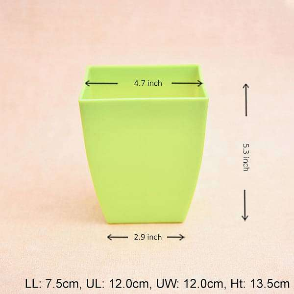 4.7 inch (12 cm) Chatura No. 12 Square Plastic Planter (Green) (set of 6) - Nurserylive