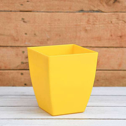 4.7 inch (12 cm) Chatura No. 12 Square Plastic Planter (Yellow) (set of 6) - Nurserylive