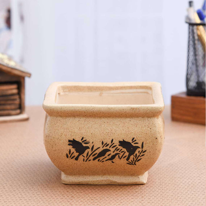 5.1 inch (13 cm) Bonsai Square Ceramic Pot (Brown) (set of 2) - Nurserylive