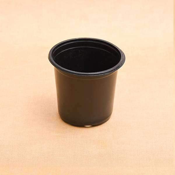 5.1 inch (13 cm) Round Thermoform Pot  (Black) (set of 20) - Nurserylive