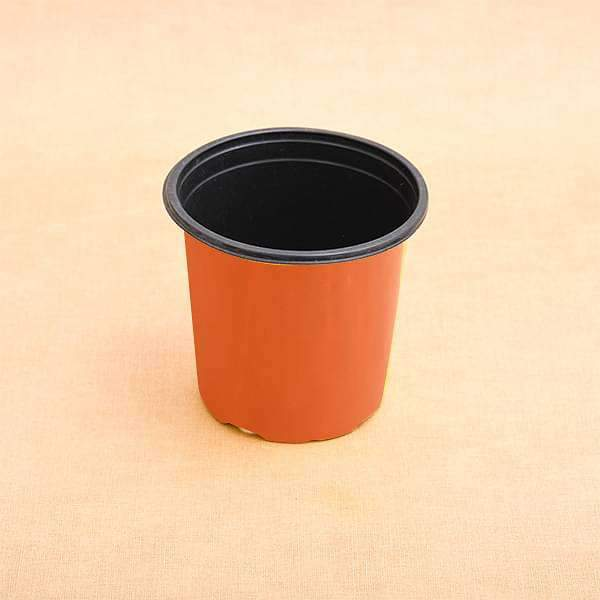 5.1 inch (13 cm) Round Thermoform Pot (Terracotta Color) (set of 20) - Nurserylive