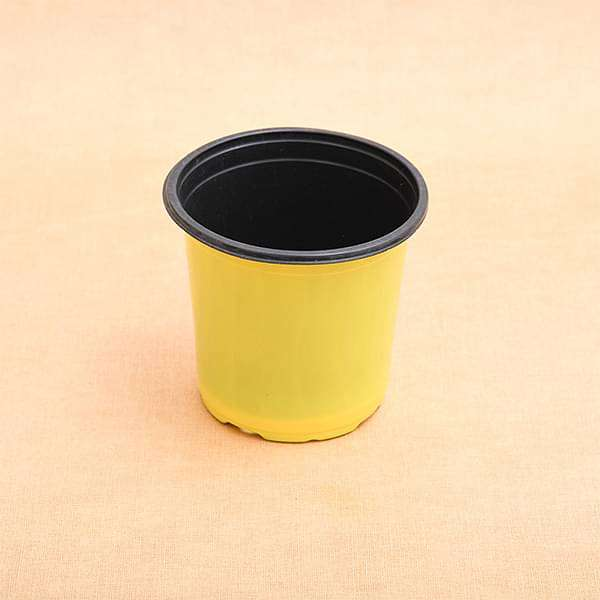 5.1 inch (13 cm) Round Thermoform Pot  (Yellow) (set of 20) - Nurserylive