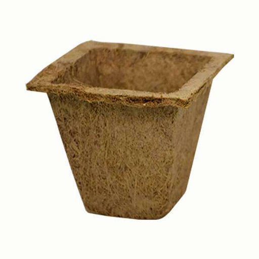 5.3 inch (13 cm) Coco Spanish Square Pot (Brown) (set of 3) - Nurserylive