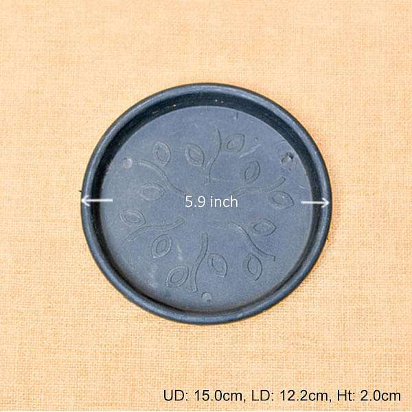 5.9 inch (15 cm) Round Plastic Plate for 5 inch (13 cm) , 6 inch (15 cm) Grower Pots (Black) (set of 6) - Nurserylive