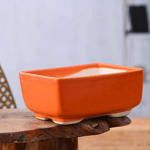 5 inch (13 cm)  Bonsai Rectangle Ceramic Pot (Orange) (set of 2) - Nurserylive
