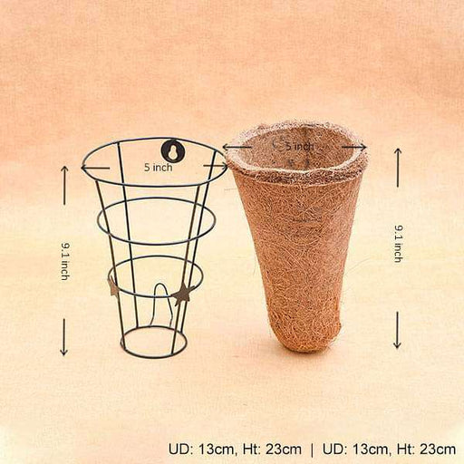 5 inch (13 cm) Conical Coir Basket Stand - Nurserylive
