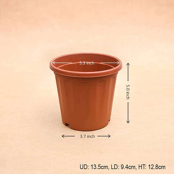 5 inch (13 cm) Grower Round Plastic Pot (Terracotta Color) (set of 6) - Nurserylive