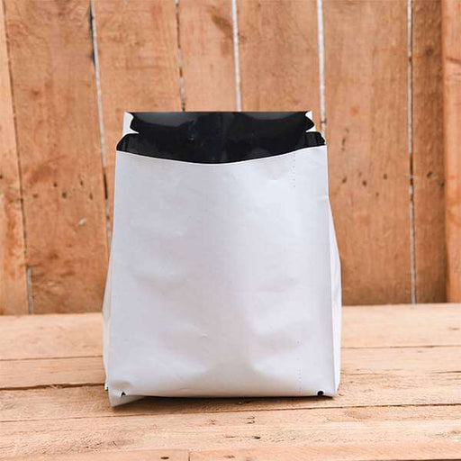 6.3 inch (16 cm) Square Grow Bag (White) (set of 10) - Nurserylive