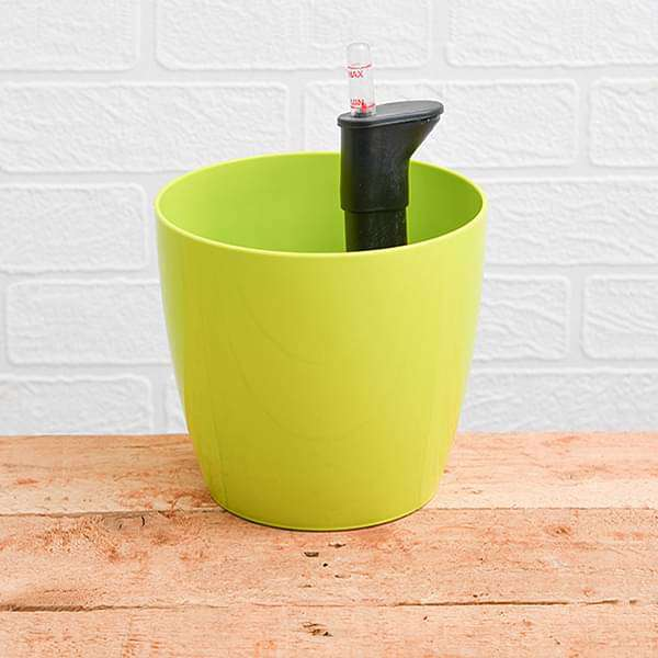 6.3 inch (16 cm) Valencia 16 Self Watering Round Plastic Planter (Lime Yellow) (set of 3) - Nurserylive