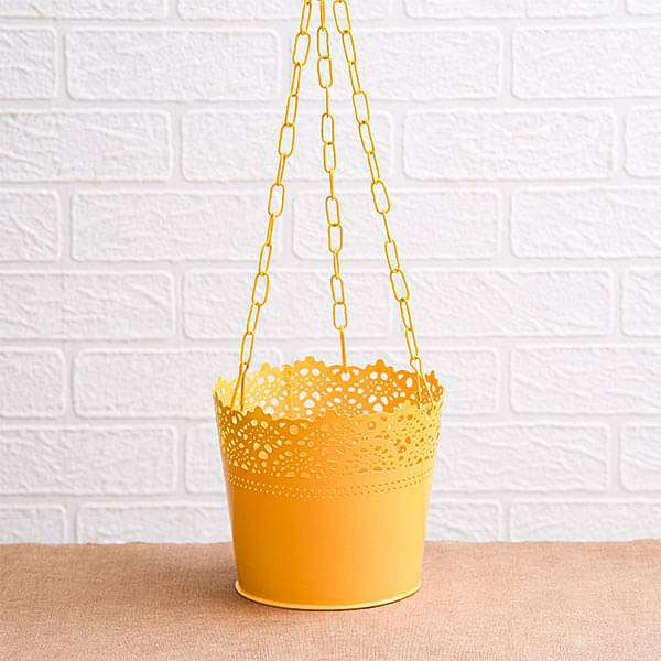 6.5 inch (17 cm) Aching Hanging Round Metal Pot with Chain (Yellow) (set of 3) - Nurserylive
