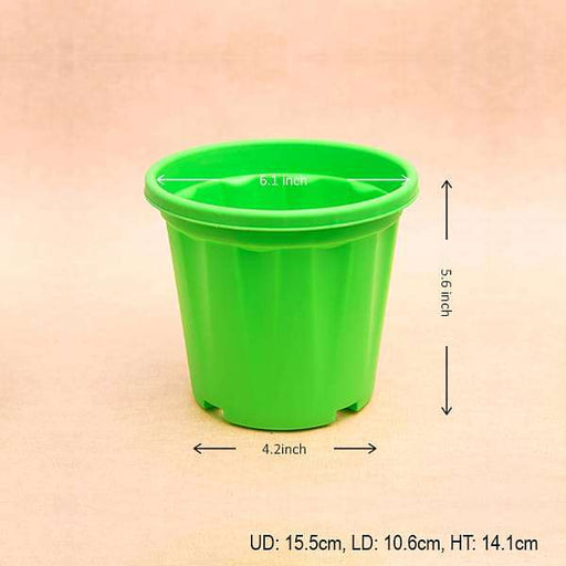 6 inch (15 cm) Grower Round Plastic Pot (Green) (set of 6) - Nurserylive