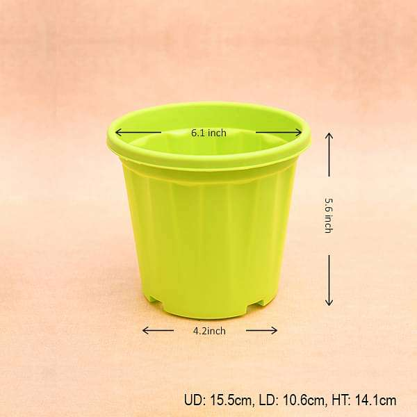 6 inch (15 cm) Grower Round Plastic Pot (Lime Yellow) (set of 6) - Nurserylive