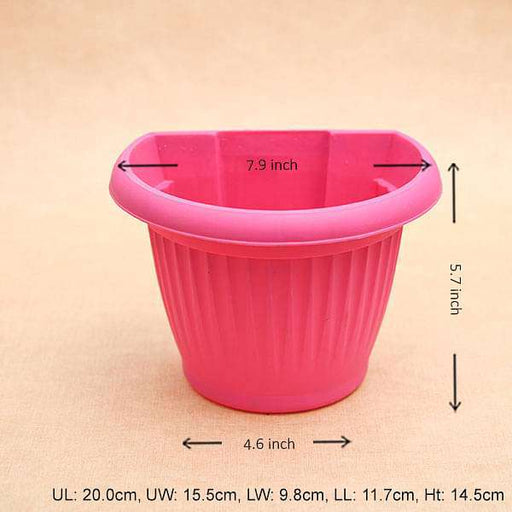 7.9 inch (20 cm) Bello Wall Mounted D Shape plastic Planter (Dark Pink) (set of 6) - Nurserylive