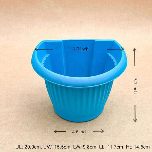 7.9 inch (20 cm) Bello Wall Mounted D Shape plastic Planter (Sky Blue) (set of 6) - Nurserylive