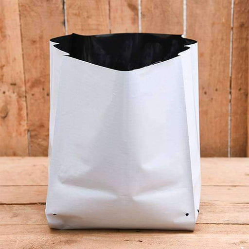 9.4 inch (24 cm) Square Grow Bag (White) (set of 10) - Nurserylive