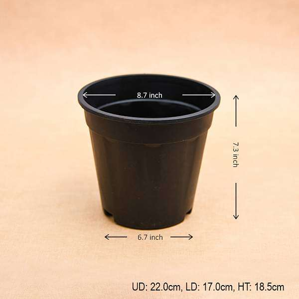 9 inch (23 cm) Grower Round Plastic Pot (Black) (set of 6) - Nurserylive