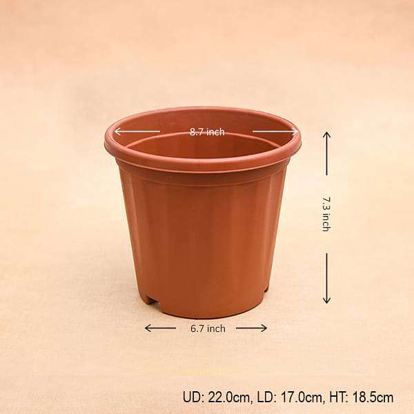 9 inch (23 cm) Grower Round Plastic Pot (Terracotta Color) (set of 6) - Nurserylive