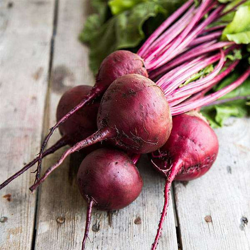 Beet Root Dark Red - Desi Vegetable Seeds - Nurserylive
