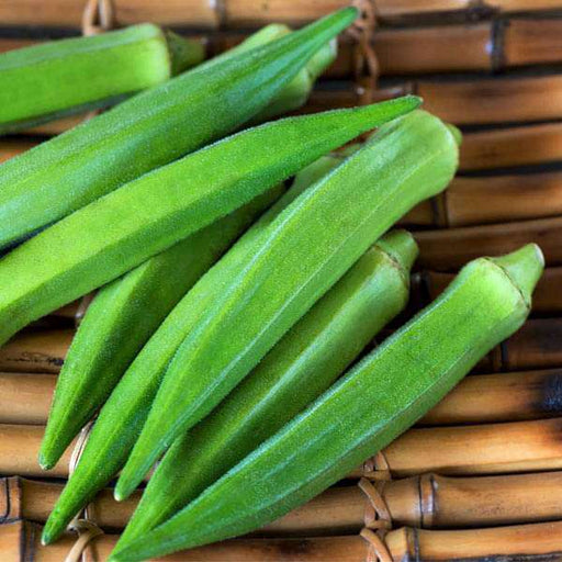 Bhindi, Okra F1 Vasant 4 - Vegetable Seeds - Nurserylive