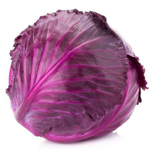 Cabbage Red Imported - Vegetable Seeds - Nurserylive
