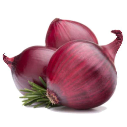Onion Nasik Red - Desi Vegetable Seeds - Nurserylive