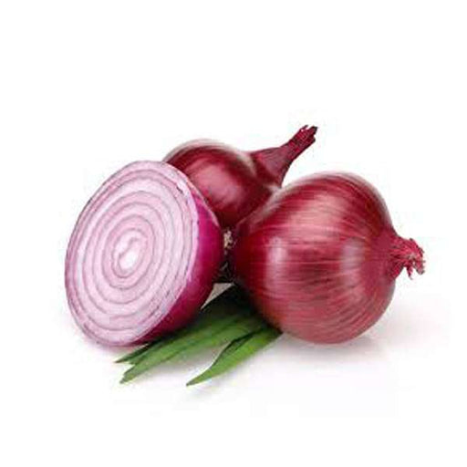 Onion NP 53 - Desi Vegetable Seeds - Nurserylive
