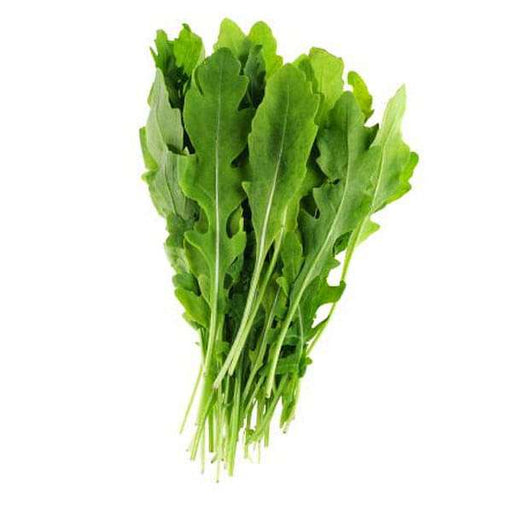 Rocket Arugula Wild Cut - Herb Seeds - Nurserylive
