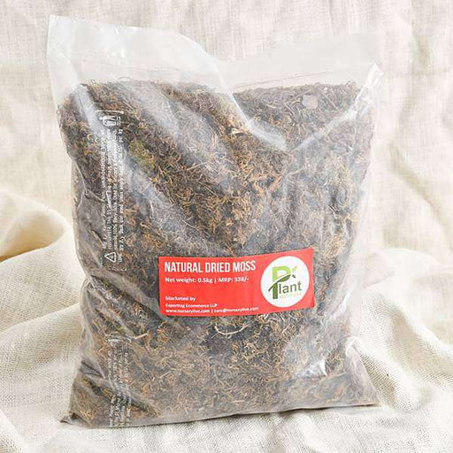 Natural Dried Moss ( 0.5 kg ) - Nurserylive