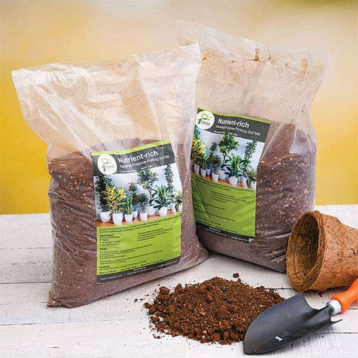 Nutrient-rich general purpose potting soil mix - 10 kg - Nurserylive