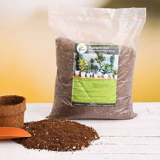 Nutrient-rich general purpose potting soil mix - 5 kg - Nurserylive