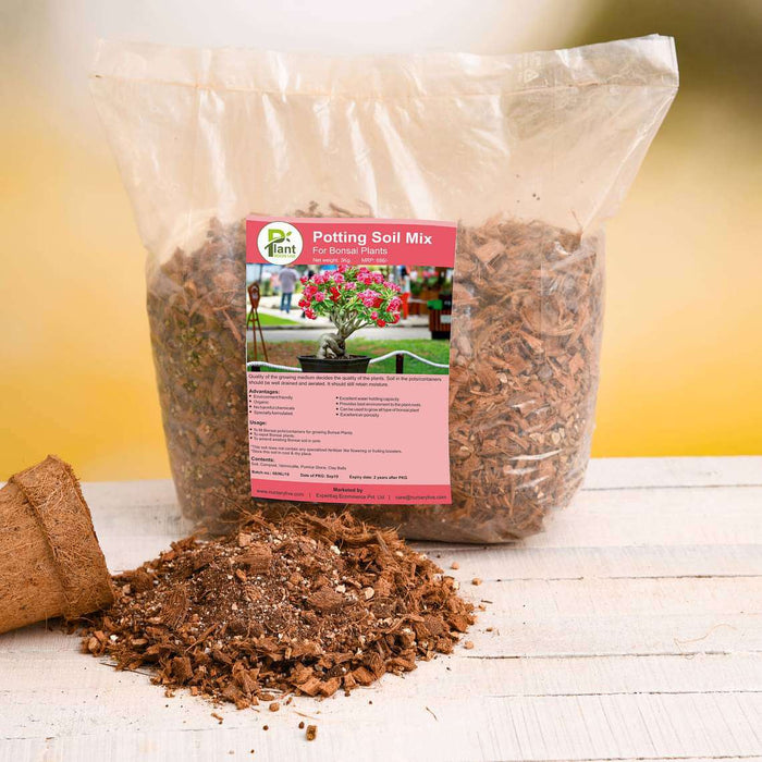 Potting Soil Mix for Bonsai Plants - 3 kg - Nurserylive