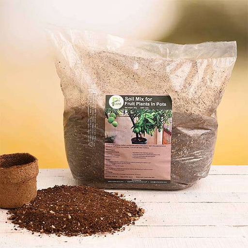 Potting Soil Mix for Fruit Plants in Pots- 5 kg - Nurserylive