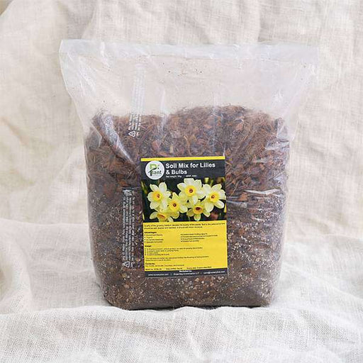 Potting Soil Mix for Lilies and Bulbs - 5 kg - Nurserylive