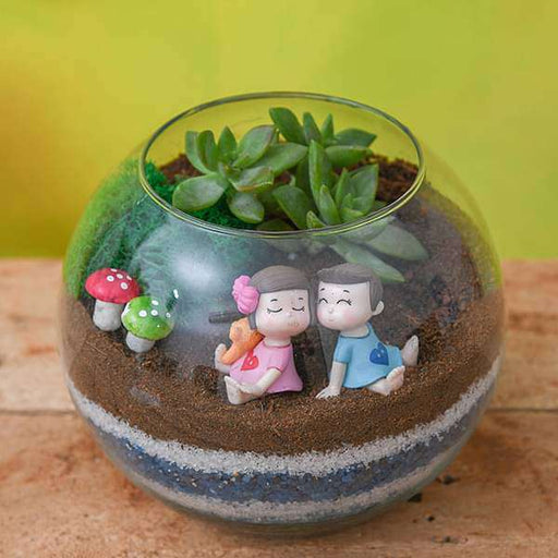 DIY Round Glass Vase Couple Terrarium - Nurserylive