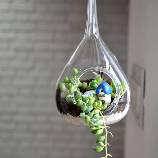 Hanging orb pear terrarium (10in Ht) - Nurserylive