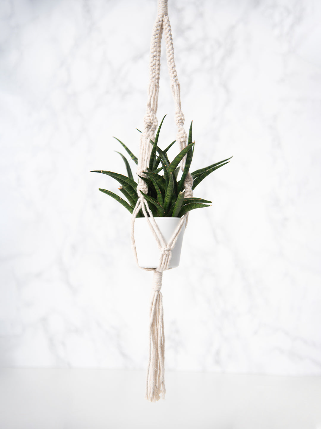 Mini Macrame Plant Hanger Craft Kit