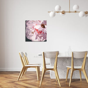 """Peony & Honeybee"" Limited Edition Canvas Print"