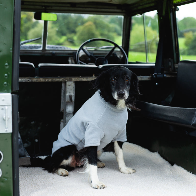 Border Collie Dog Coat