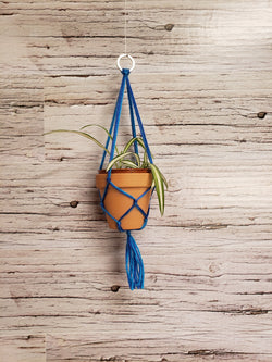 "Mini Macrame Plant Hanger with 2"" Pot"