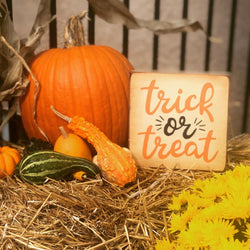 Decorative Fall Door Kits