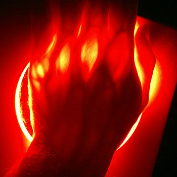Types of Red Light Therapy