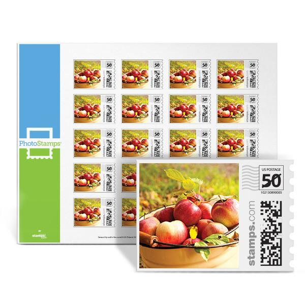 Apple Barrel PhotoStamps
