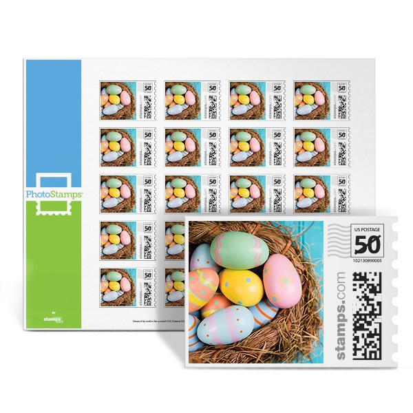 Basket of Color PhotoStamps