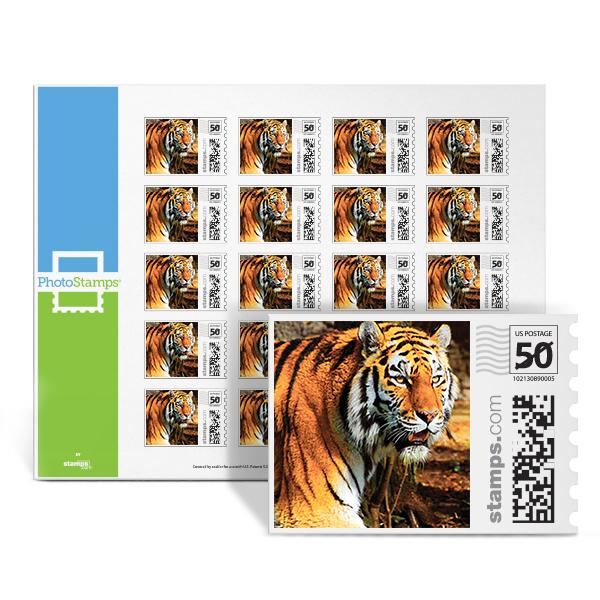 Bengal Tiger PhotoStamps