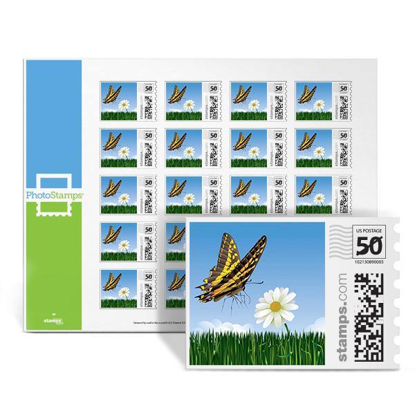 Butterfly PhotoStamps
