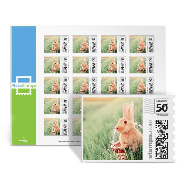 Easter Surprise PhotoStamps