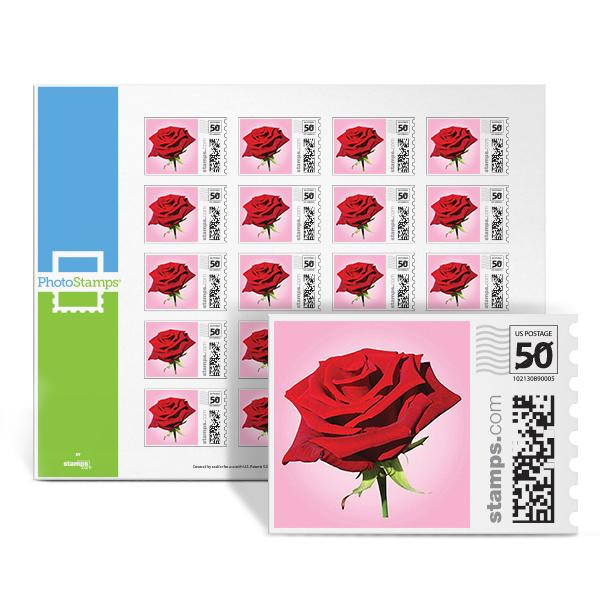 Rose PhotoStamps