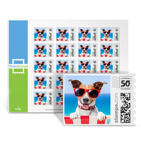 Summer Pup PhotoStamps